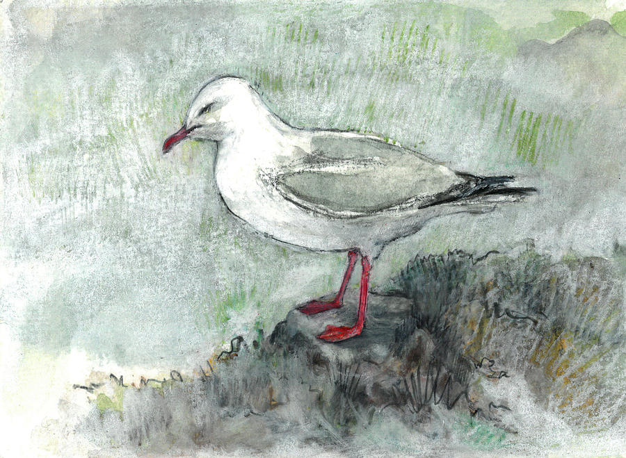 Silver Gull by Abby McBride