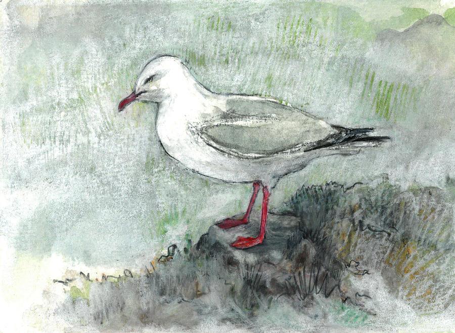 Silver Gull by Abby McBride