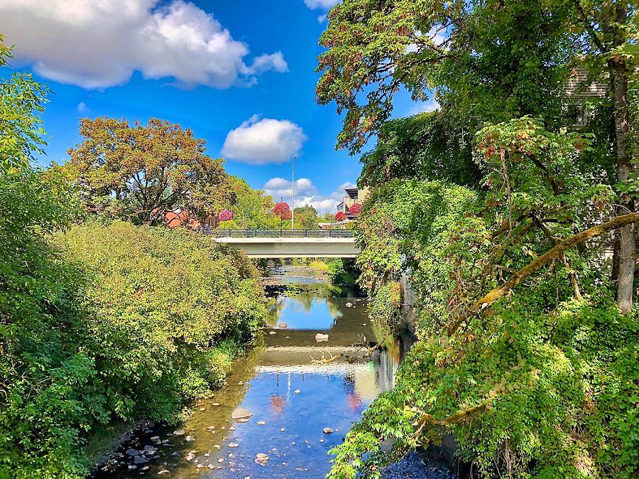 Silverton Photograph - Silverton Gazing by Brian Eberly