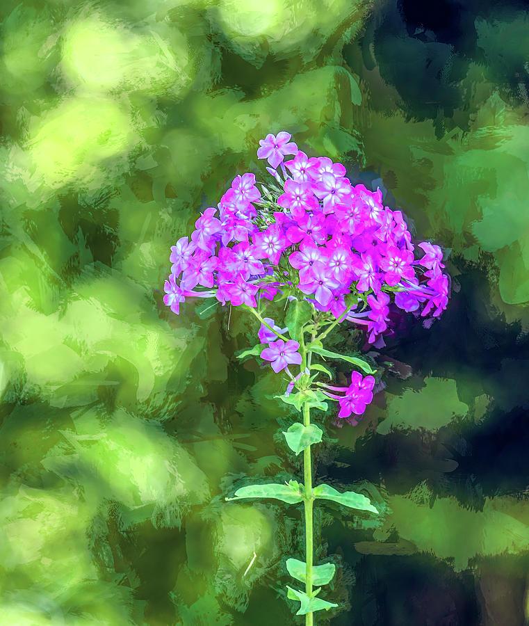 Simply Purple by Marcy Wielfaert