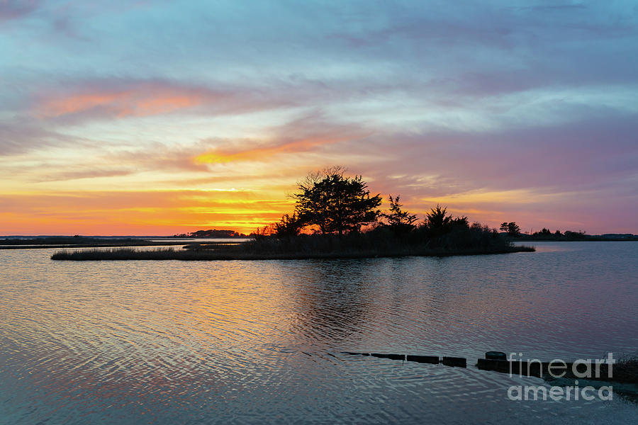Sunset Photograph - Sinepuxent Bay Sunset  by Michael Ver Sprill