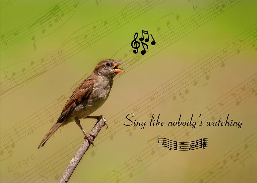 Sing by Cathy Kovarik