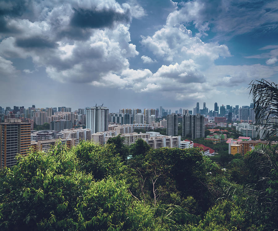 Singapore Views by Nisah Cheatham