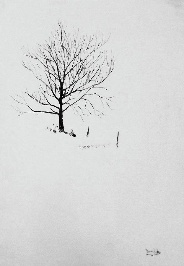 SINGLE TREE by Barry BLAKE
