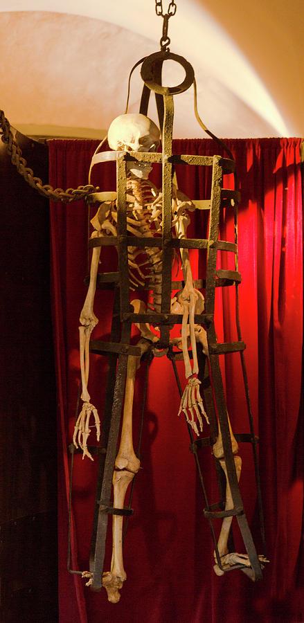 Skeleton Photograph - Skeleton  In Torturedevise by Iris Richardson