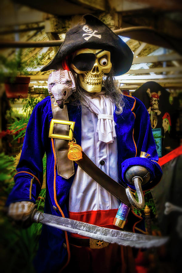 Skeleton Pirate by Garry Gay