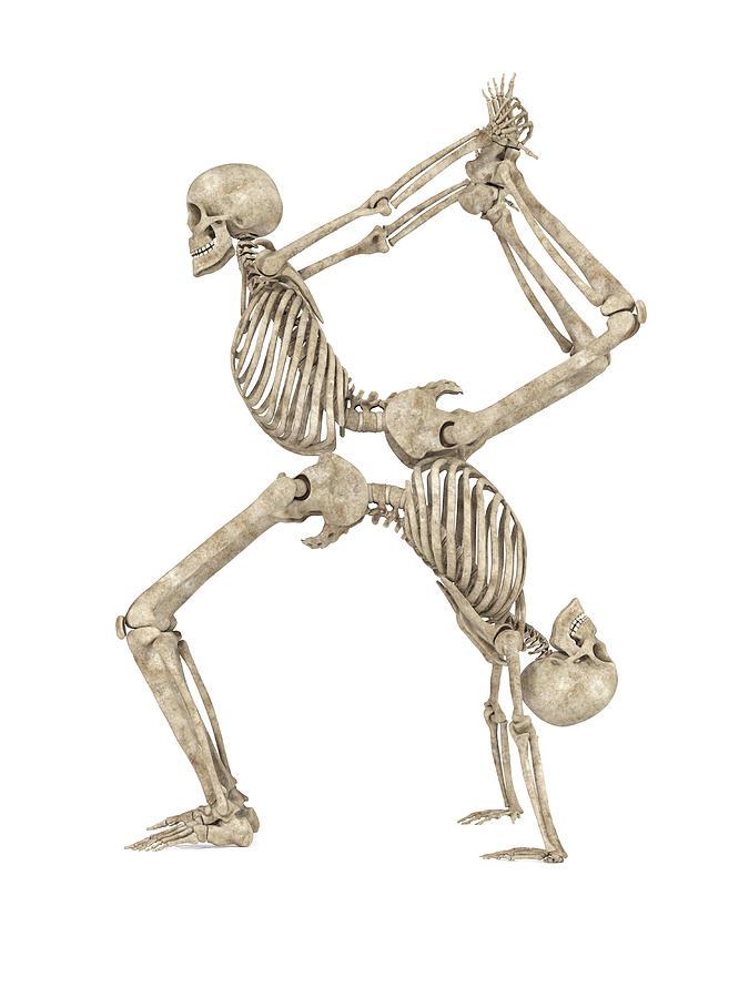 Skeleton Digital Art - Skeleton Yoga 003 by Betsy Knapp