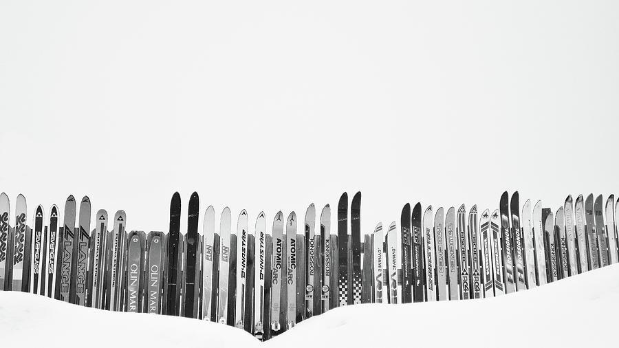 Black And White Photograph - Ski Season by Dana Klein