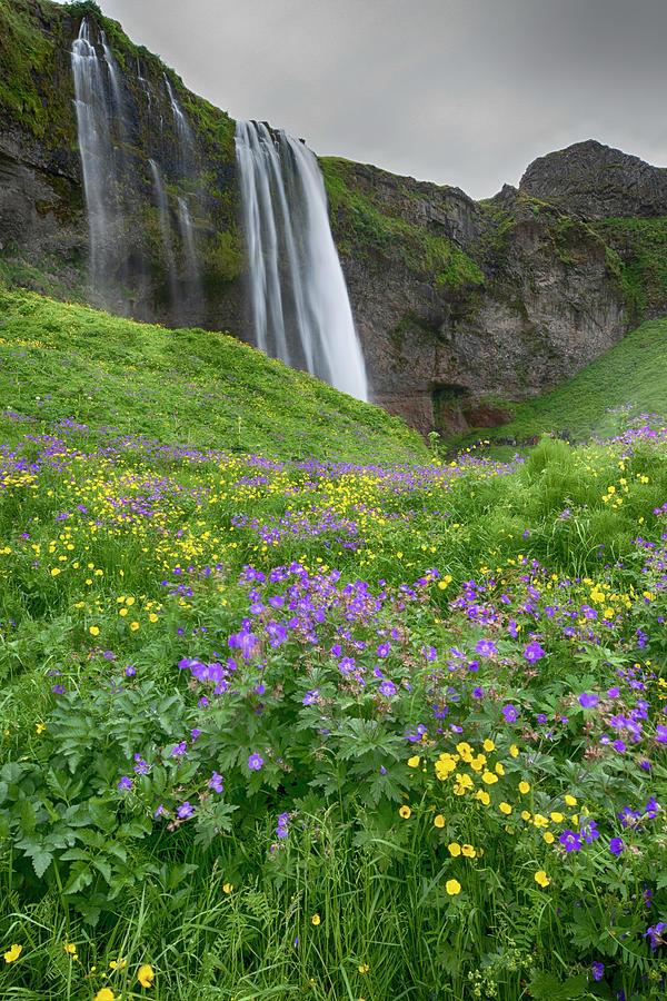 Skogafoss Waterfall Iceland 7011904 by Rick Veldman