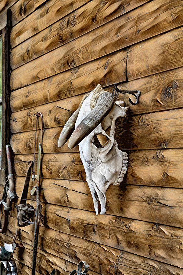 Skull on a Wall by Lowell Monke