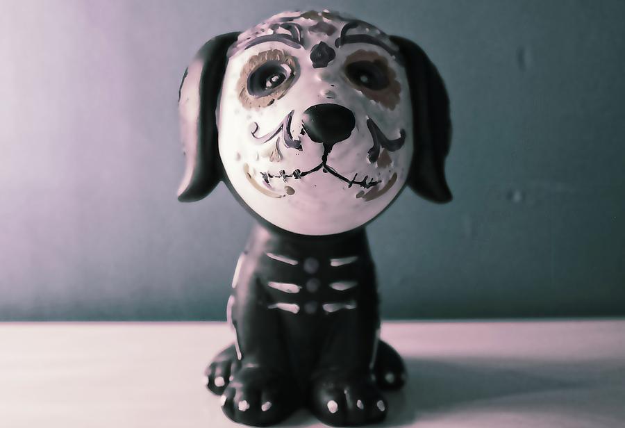 Skull Puppy by Cheryl Fulton