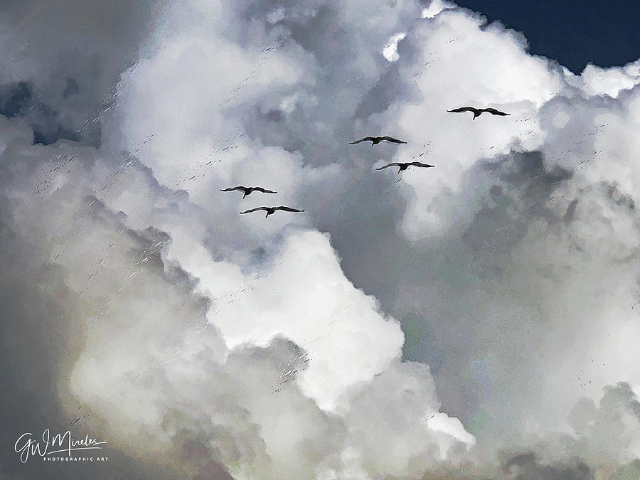Sky Squadron by GW Mireles