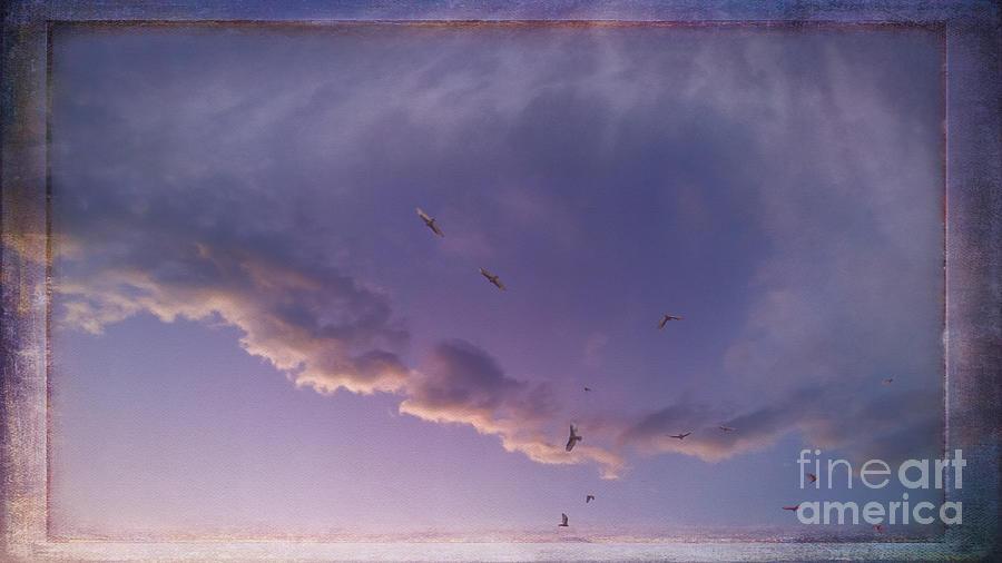 Skys Eye Digital Art