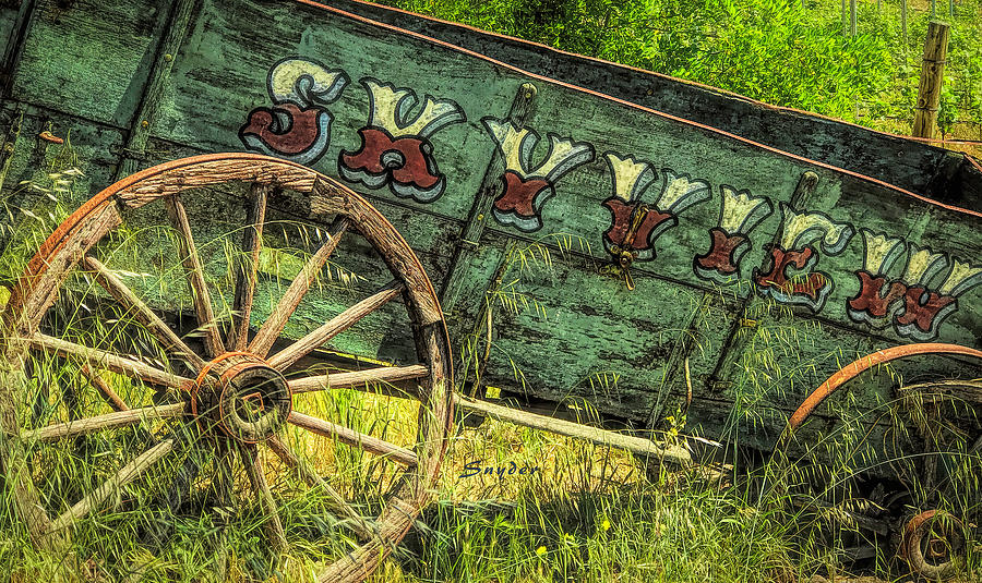 Skyview Freight Wagon  by Barbara Snyder