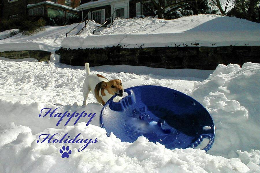 Sledding Dog Happy Holidays by MARVIN BOWSER
