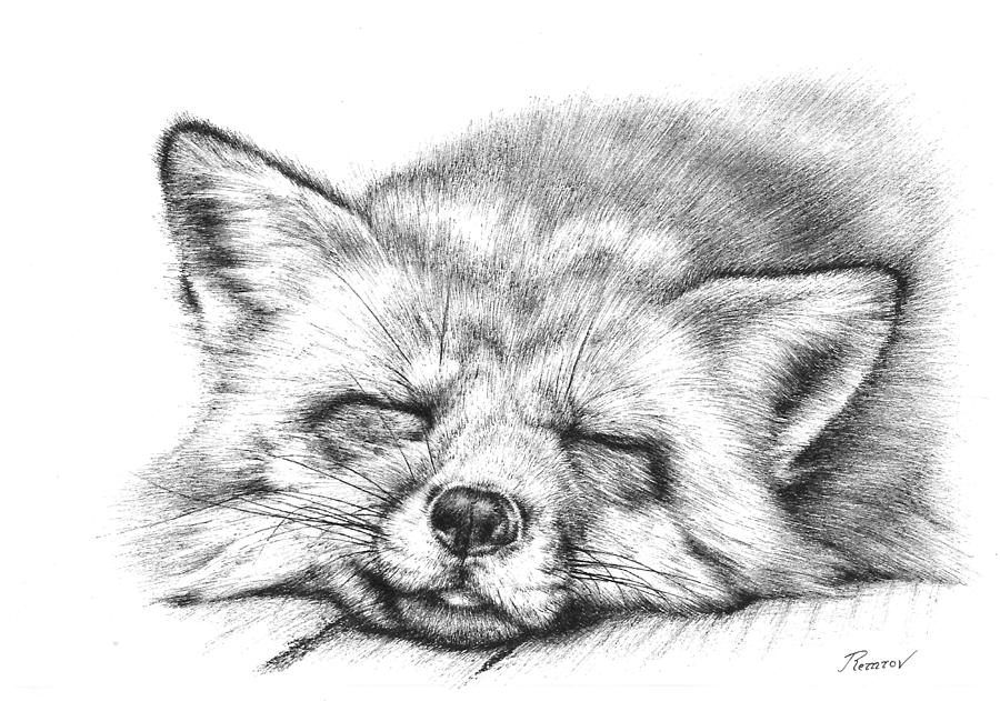 Sleepy Fox by Remrov