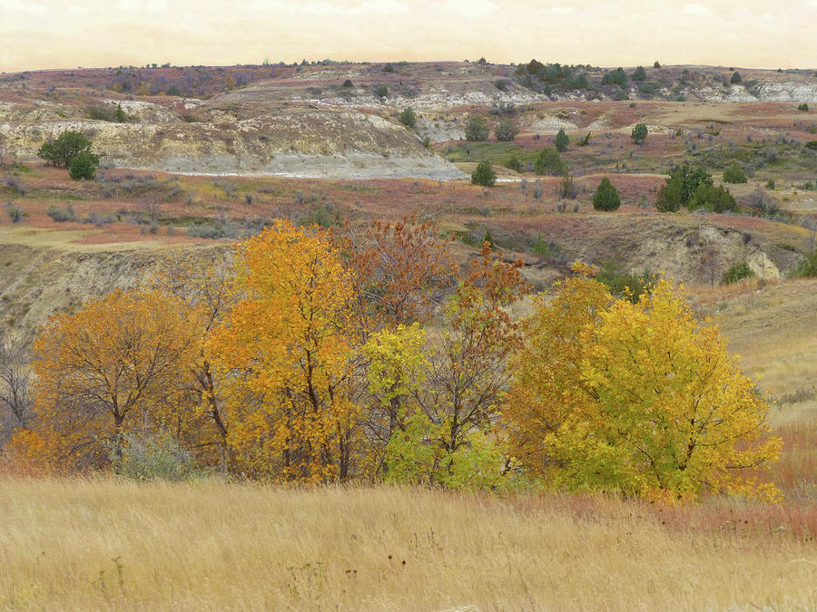 North Dakota Photograph - Slope County September Splendor by Cris Fulton