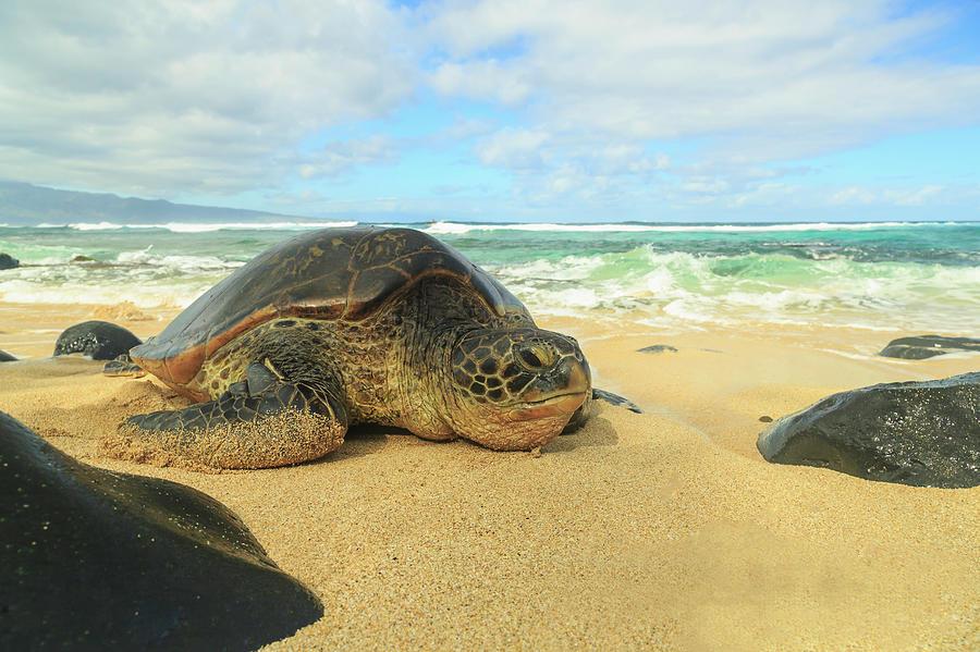Beach Photograph - Small Beach In Makena Area, Maui by Stuart Westmorland