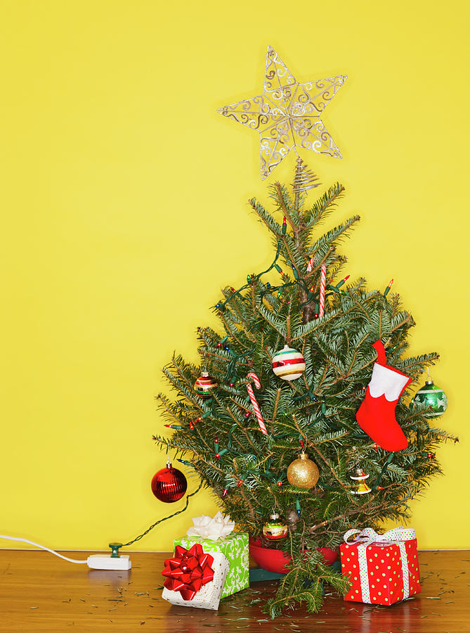 Small Christmas Tree Against Yellow Photograph by Tetra Images