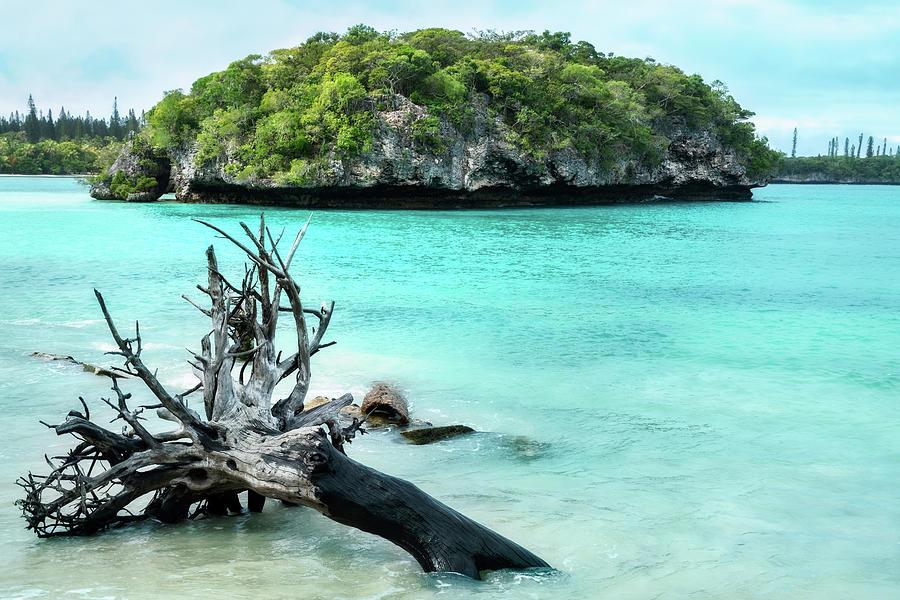 Small Island at Kanumera Bay in New Caledonia by Daniela Constantinescu