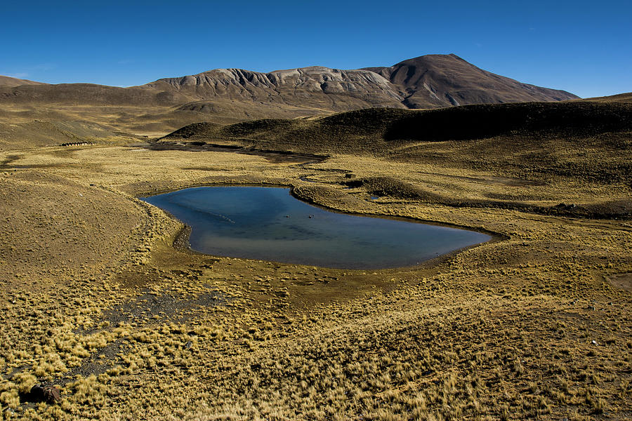 Small Lagoon In Condoriri National Park Photograph by © Santiago Urquijo