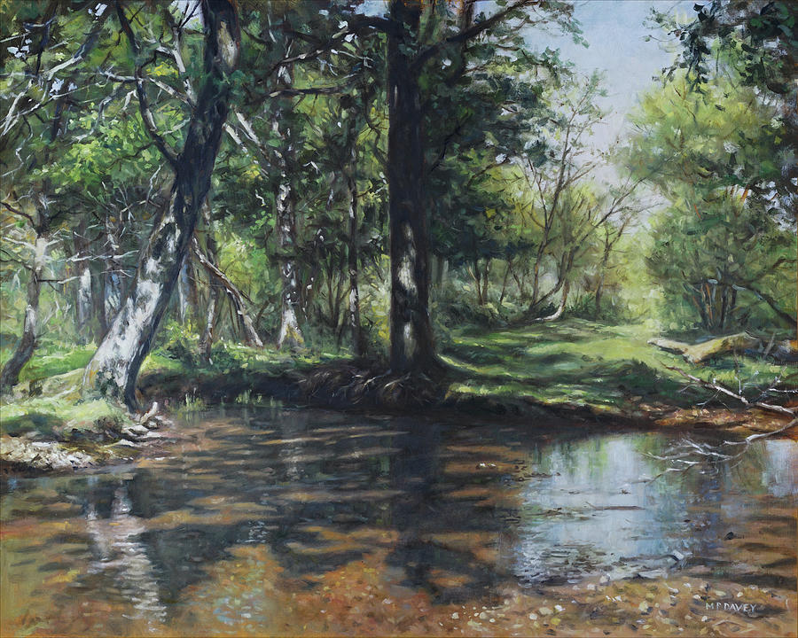 Small New Forest stream in summer by Martin Davey