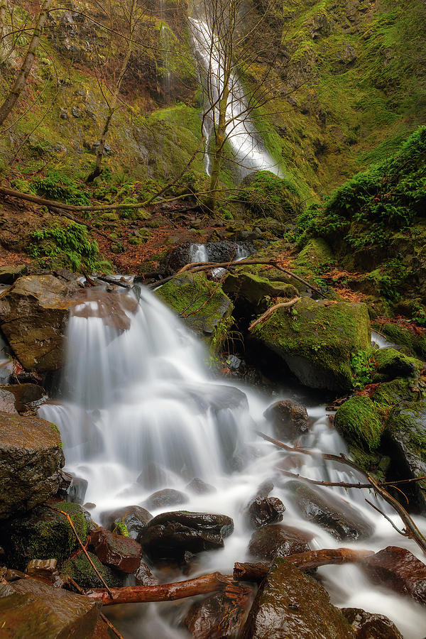 Small Waterfall by Starvation Creek Falls by David Gn