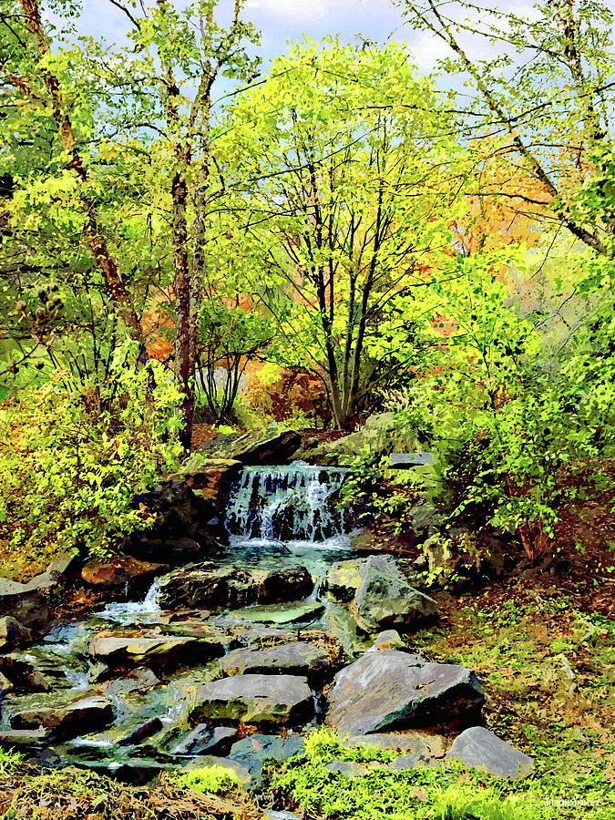 Small Waterfall in Autumn Park by Susan Savad