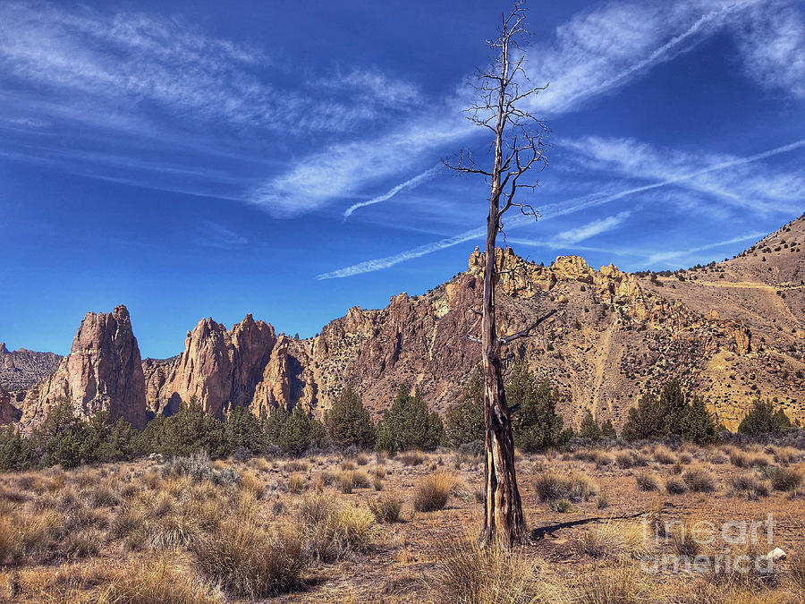 Smith Rocks State Park by Jeanette French