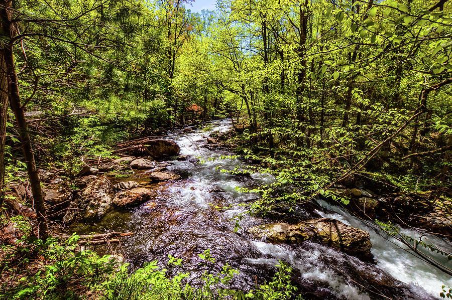 Smokey Mountain Waterfall DSC_0549 by Michael Thomas