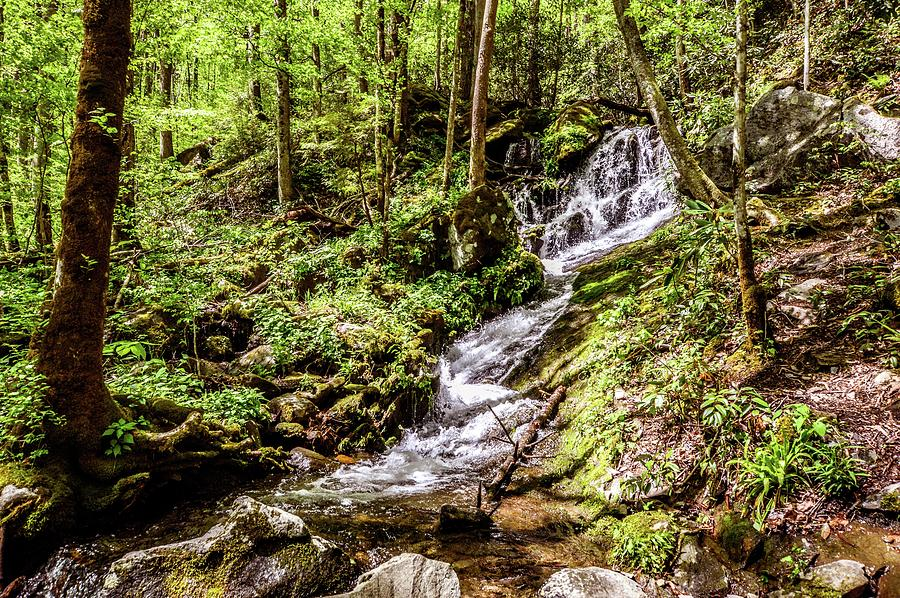 Smokey Mountain Waterfall DSC_0579 by Michael Thomas