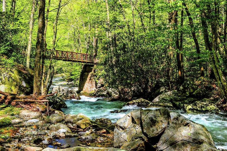 Smokey Mountain Waterfall with Bridge DSC_0535 by Michael Thomas