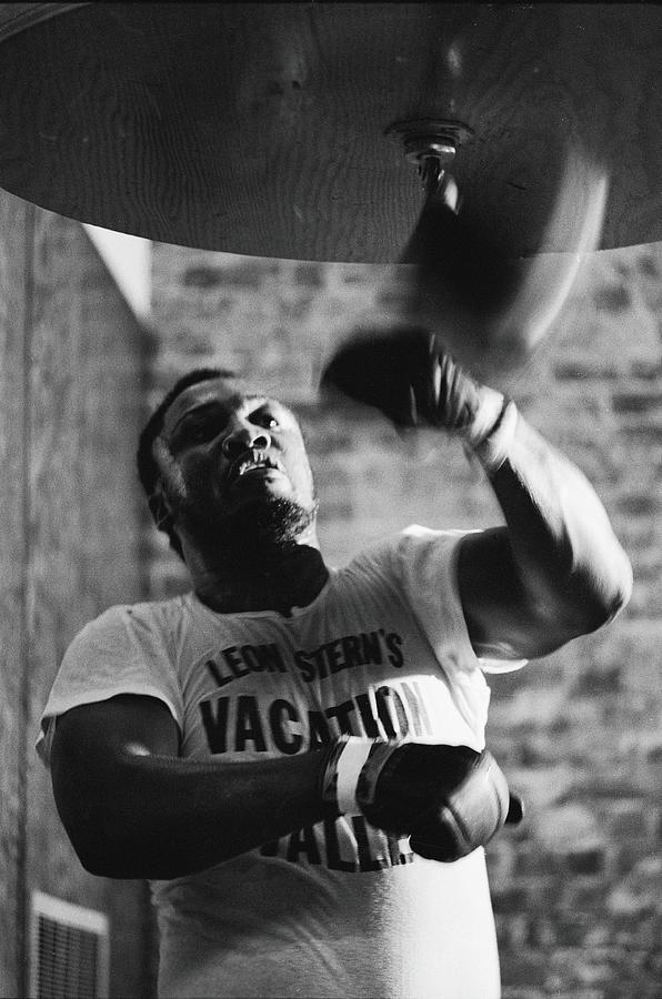 Smokin Joe In Training Photograph by John Shearer