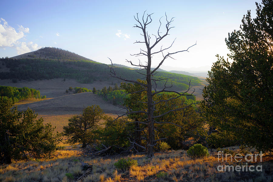 Smoky High Plains by Barbara Schultheis