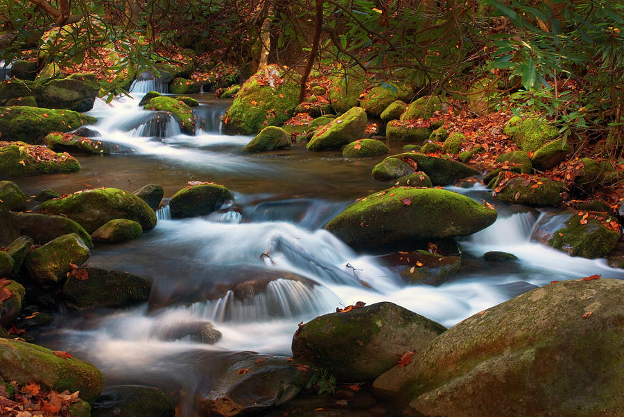 Smoky Mtn. stream in Autumn by Paul W Faust - Impressions of Light