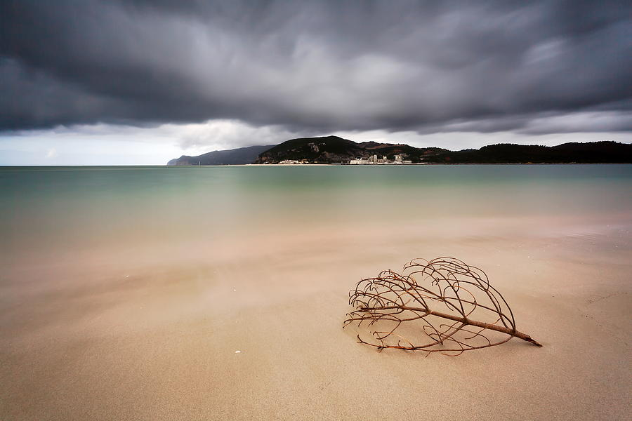 Landscape Photograph - Smooth Feeling by Rui David