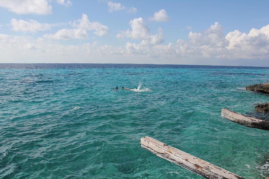 Snorkeling by Ruth Kamenev