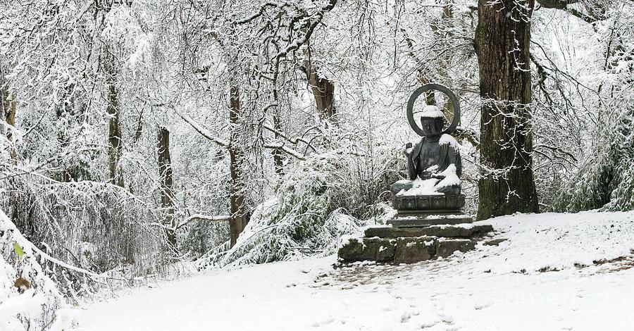 Buddha Photograph - Snow Buddha Batsford Arboretum by Tim Gainey
