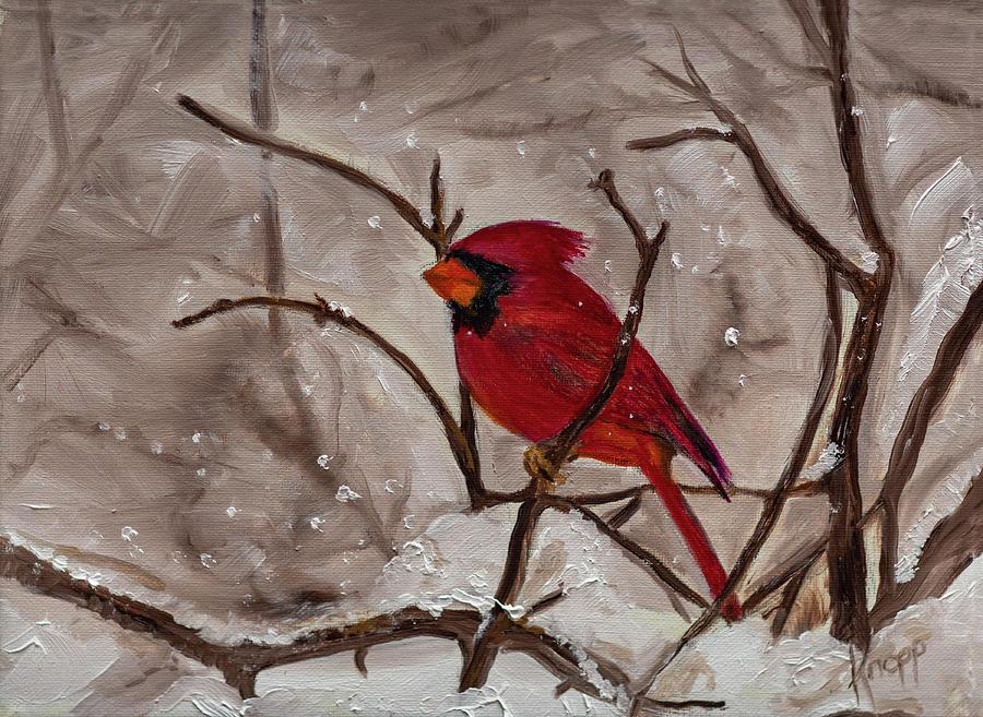 Snow Cardinal by Kathy Knopp