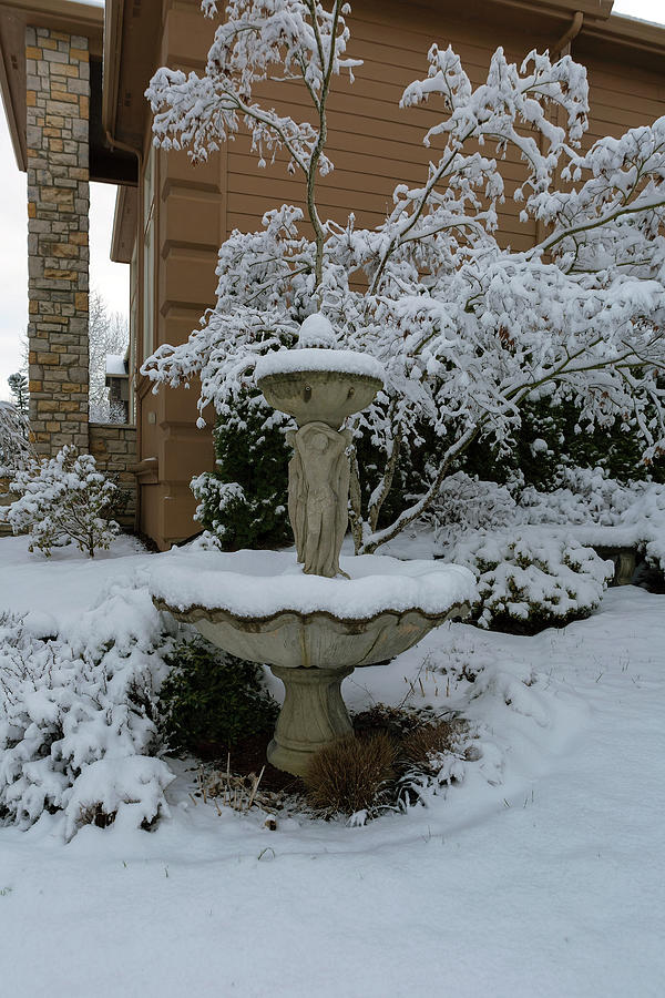 Snow Covered Water Fountain in Front Yard by David Gn