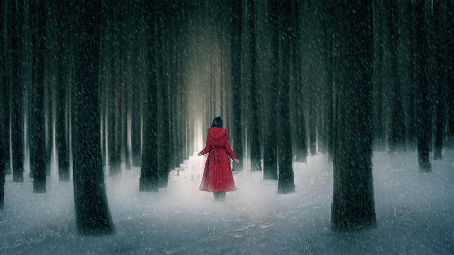 Red Riding Hood Photograph - Snow Day by Bingo Z