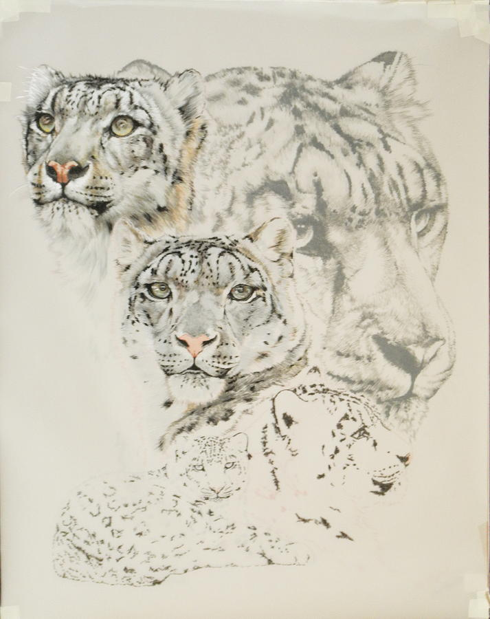 2012 Snow leopard day 7 by Barbara Keith
