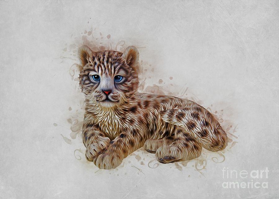 Snow Leopard by Ian Mitchell