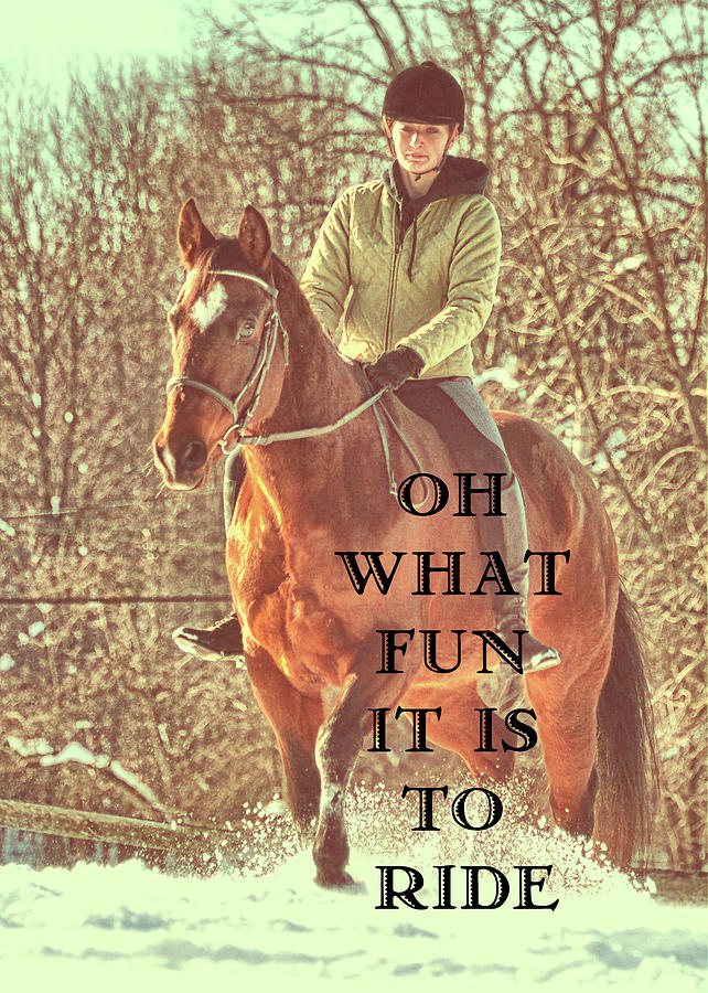 SNOW RIDE quote by Dressage Design