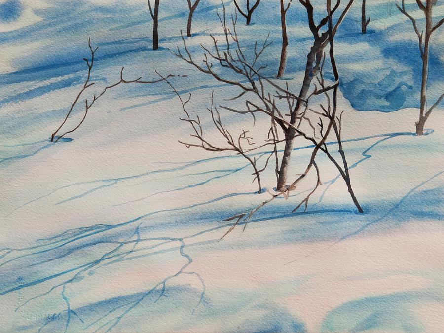 Snow Shadow II by Heidi E Nelson