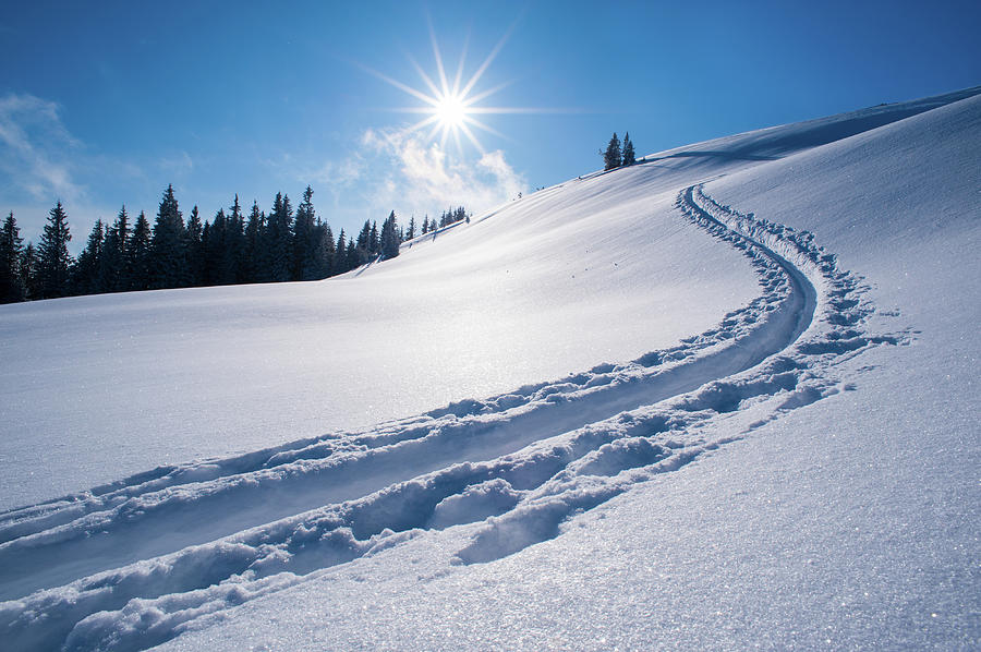 Tranquility Photograph - Snow Track Of A Backcountry Skier In by Olaf Broders