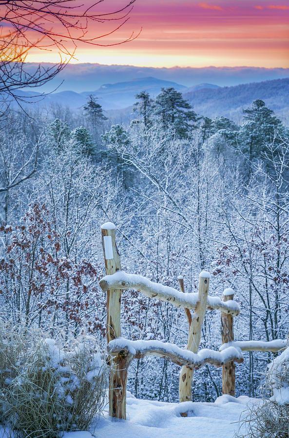 Snow Trail by Joye Ardyn Durham
