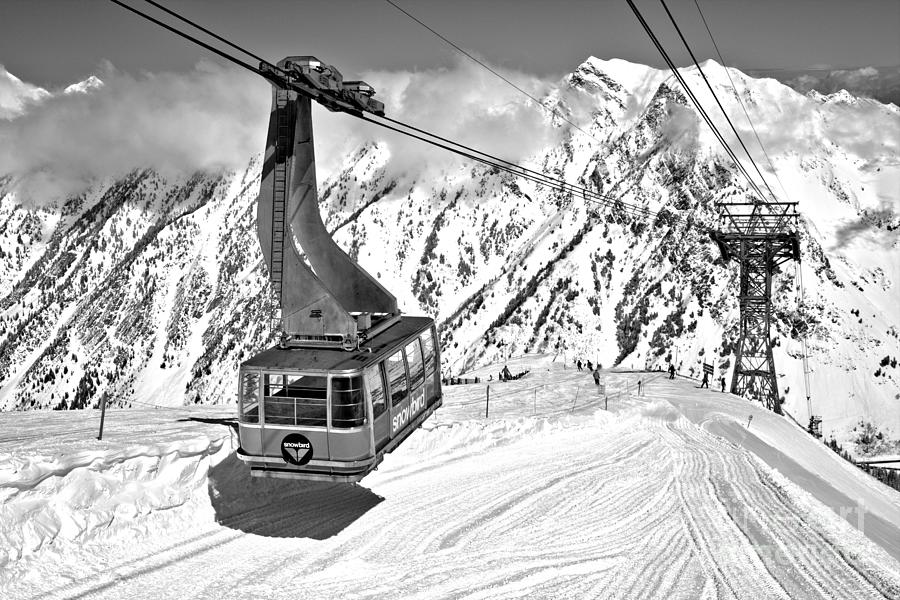 Snowbird Blue Tram Shadow Black And White by Adam Jewell