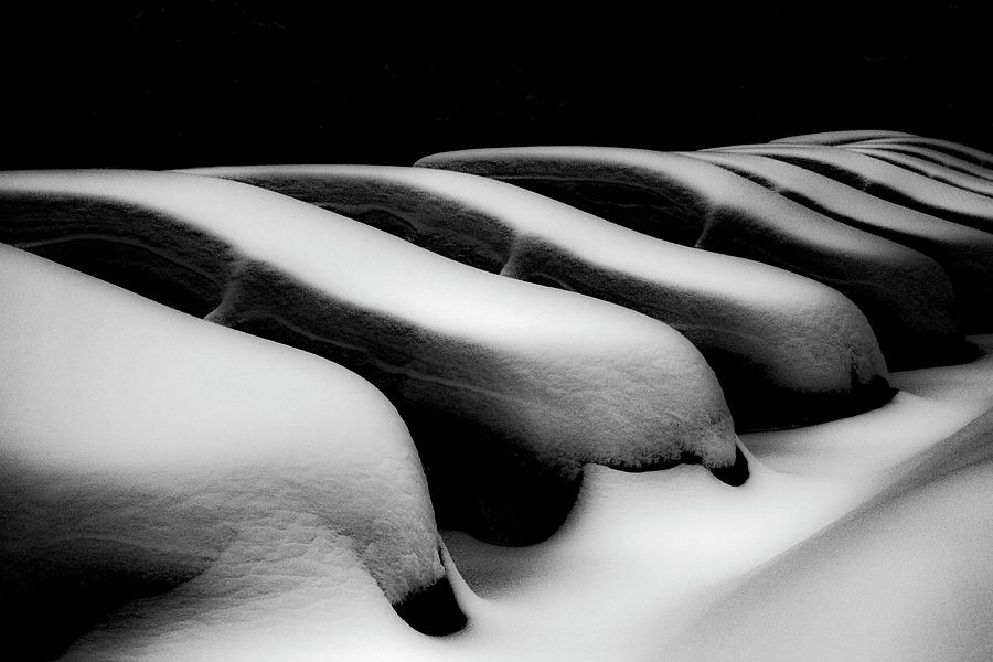 Snowbound Photograph by Made By Ende Photography