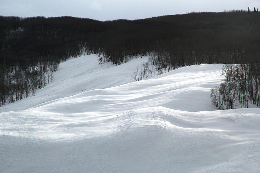 Snowdrift by Marie Leslie